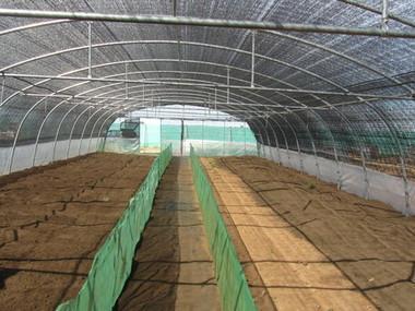 Montaje de invernadero umbráculo para producción de caracoles en Toledo