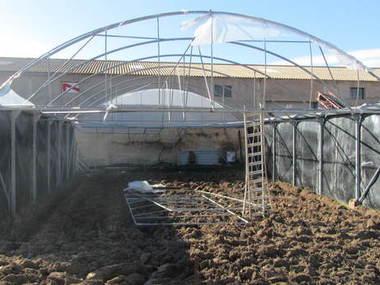 Reparación y montaje de cubierta nueva de PVC en invernadero ubicado en Soria