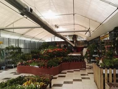 Instalación Pantalla Térmica Trapezoidal en Garden Center - invernadero. Centro de jardinería en Madrid