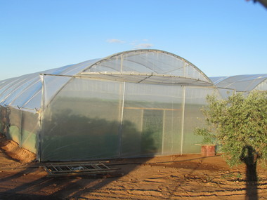 Invernadero umbráculo Caracoles Toledo con ventilación y pantalla de sombreo
