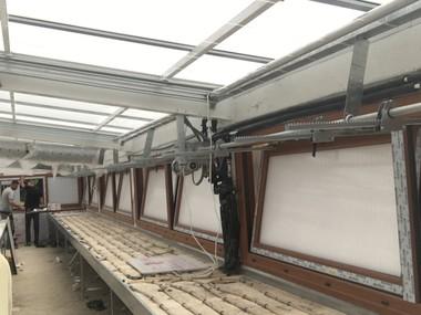 Instalacion Ventanas PVC y hoja Policarbonato celular en invernadero. Automatizadas viento y temperatura