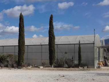 Cambio de plastico de invernadero y reparación de ventanas en centro de jardinería en Alicante