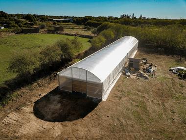 Diseño y construcción de invernadero multitunel para cultivo de palmeras