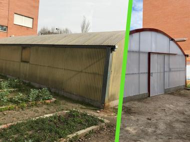 Cambios y mejoras en invernadero